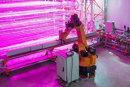 Инновационная роботизированная  вертикальная теплица  с подвижными платформами