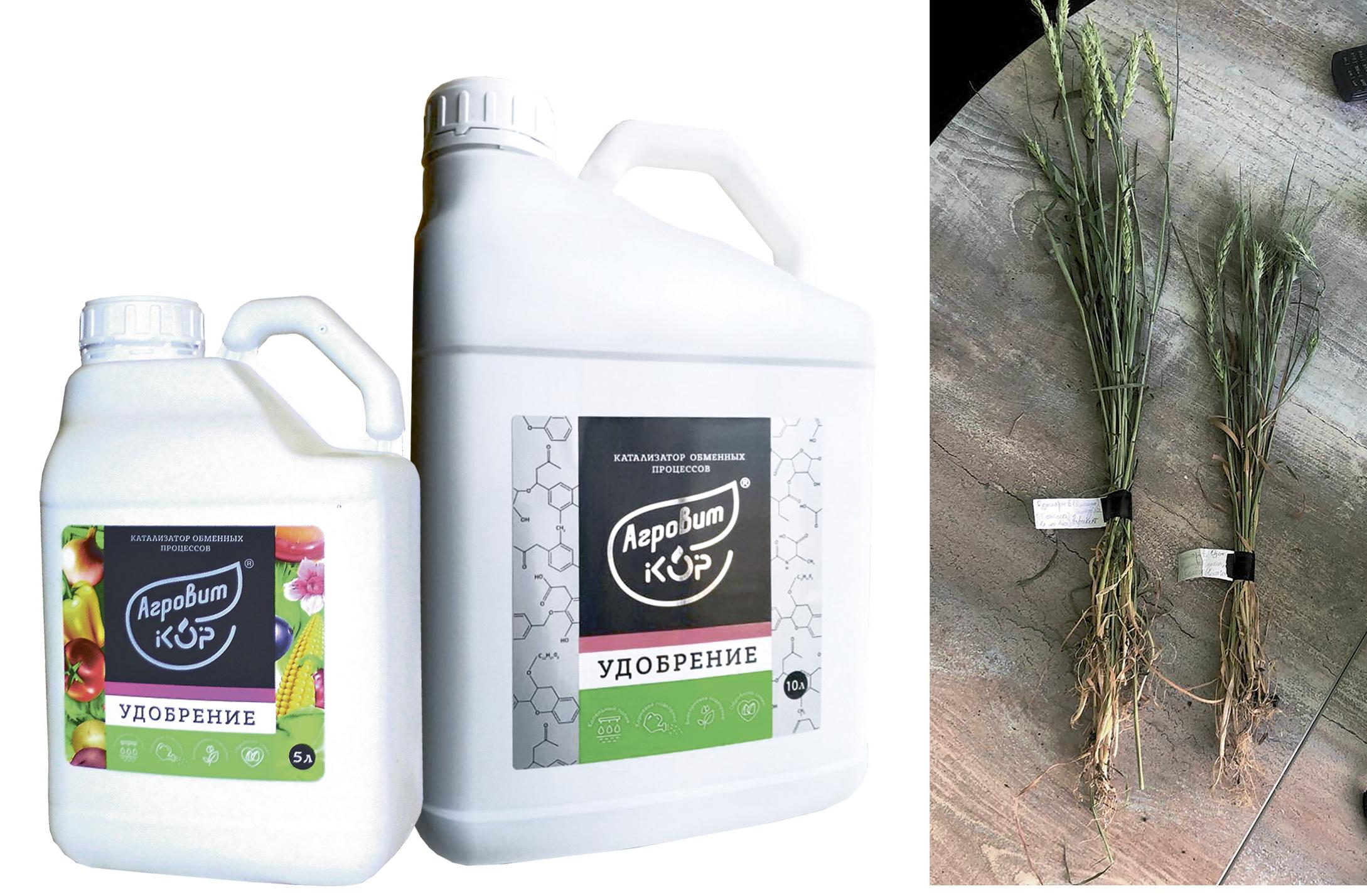 Повышение усвоения питательных элементов растениями с помощью уникального  кремнийгуминового удобрения