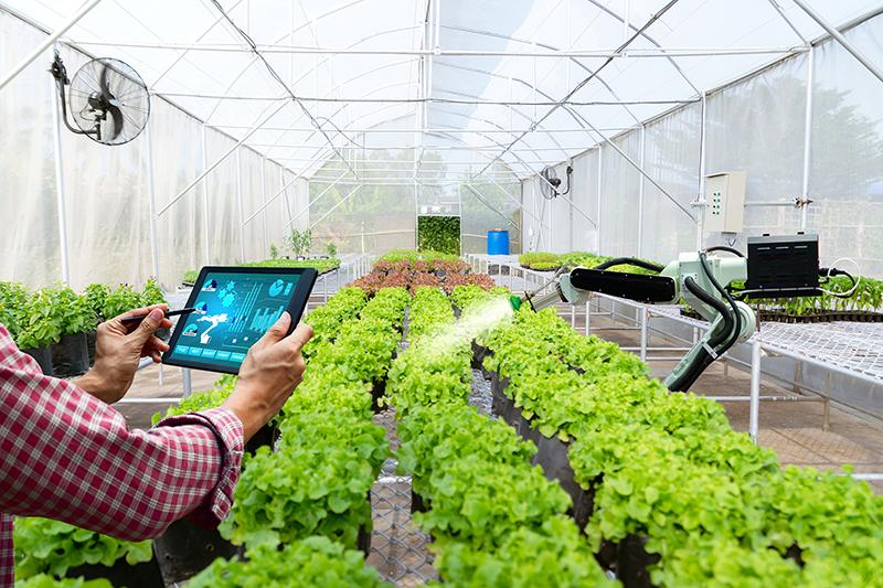 «Умное сельское хозяйство» – главная тема Международной агропромышленной выставки «Сибирская аграрная неделя - 2020»