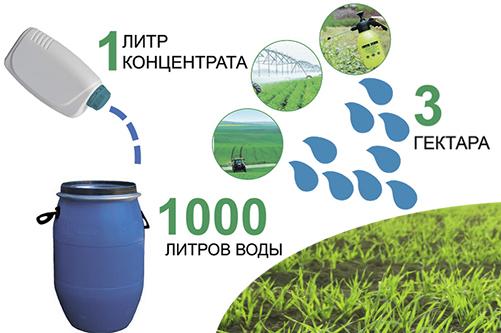 Новая отечественная разработка:  иммуномодуляторы для растений  Bioactivesoil