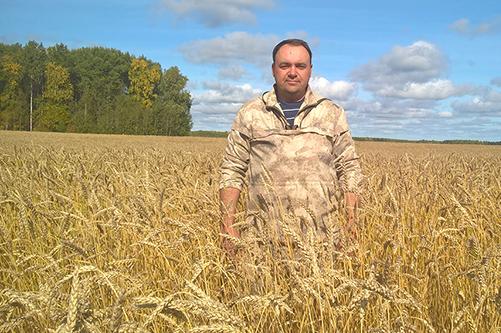 Исследование системы гербицидной  и инсектицидной защиты яровой пшеницы  на базе ООО «Каменское-2»