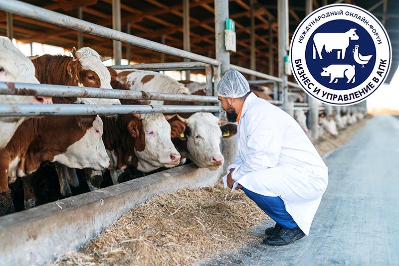 1-2 октября 2020 года ГК ВИК проведет Международный онлайн-форум «Ветеринария и кормление» для специалистов в области молочного и мясного скотоводства